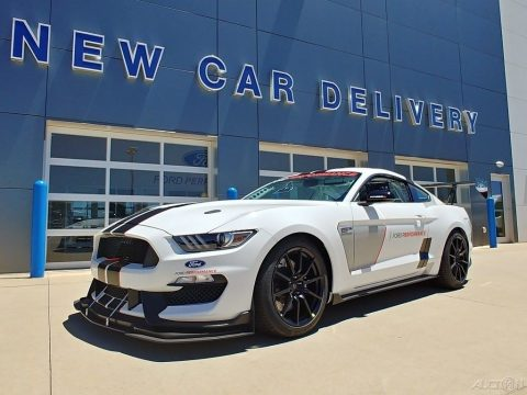 2017 Shelby FP350s #25, SCCA Race Car for sale